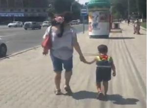 Прогулка ростовчан с необычным питомцем в центре города попала на видео