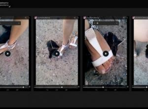 Ростовская полиция начала проверку по видео с издевательством над котенком