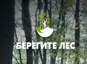 Уникальное мобильное приложение поможет спасти лес Ростова-на-Дону от пожаров