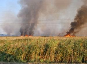 В Ростовской области из-за попадания снарядов загорелось поле