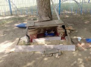 Евроремонт для уличного потеряшки сделали добрые ребятишки в Ростовской области
