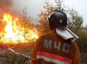 Из-за лесных пожаров в Верхнедонском районе Ростовской области введен режим ЧС