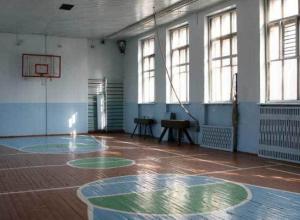 В Ростове драка на уроке физкультуры закончилась для ученика  уголовным делом