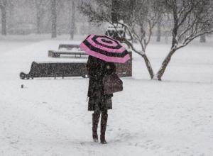 Дикая метель, гололедица и морозы целую неделю: спасатели готовятся к худшему в Ростове