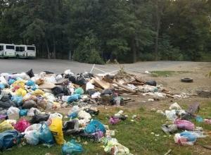 Остановка «Лесничество» в Ростове-на-Дону утопает в мусоре