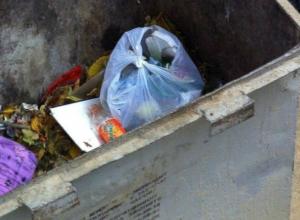 Бессердечную мать выброшенного в мусорный контейнер ребенка разыскивают в Ростове