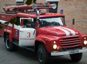 Мужчина погиб в пожаре в садоводческом товариществе Ростова