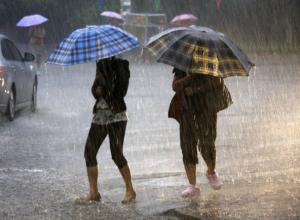 Проливные дожди обрушатся на жителей Ростова в этот рабочий четверг