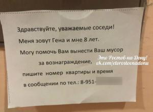 Заработать на «ленивых соседях» решил смышленый 8-летний жилец многоэтажки в Ростове