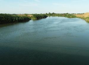 Оросительный сезон с донской водой начался в Ростовской области