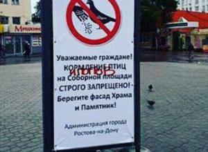Ростовчане мгновенно отреагировали на запрет кормления птиц в центре города
