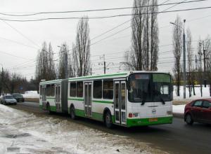 Пассажирским автобусам открыли движение на трассах в Ростовской области