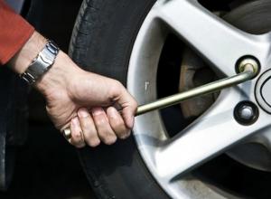 В Ростовской области поймали колесного воришку
