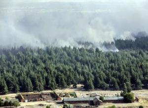 Тысяча человек пытается усмирить колоссальный природный пожар в Ростовской области