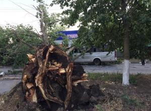 Мощная ураганная «вакханалия» в Ростове крушит все на своем пути