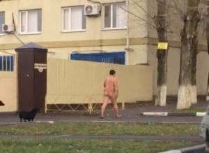 В Ростовской области обнаружили и засняли на видео гуляющего «снежного» человека