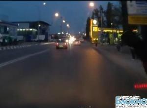 В Ростове по видео разыскивают лошадь, устроившую ДТП