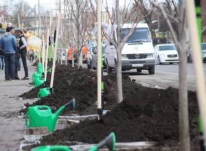 Грандиозная «зеленая» акция с участием Кушнарева состоялась в Ростове