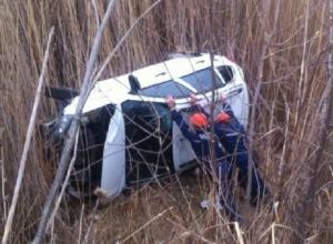 Цапля на проезжей части спровоцировала девушку за рулем авто совершить ДТП в Ростовской области