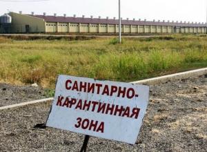 Карантинную зону ввели на границе с Украиной в Ростовской области