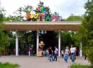 Смотровая площадка зоопарка Ростова изменит свой облик за счет городского бюджета