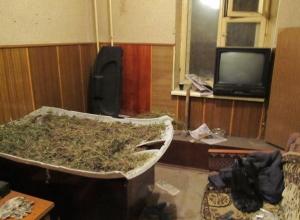 В Ростове будут судить полицейских, которые подбрасывали наркотики невиновным