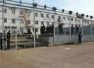 «Загадочные» смерти заключенных привели к масштабным проверкам в колонии Ростова