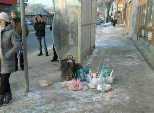 Ленивые ростовчане завалили своими мусорными мешками автобусную остановку
