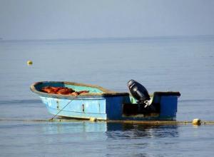 В Ростовской области утонул рыбак, не доплыв до берега 20 метров