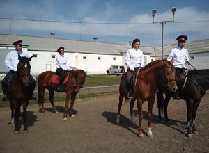 Казаки на конях будут успокаивать дебоширов во время матчей ЧМ-2018 в Ростове