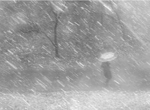 В Ростове ожидаются сильный дождь и шквалистый ветер