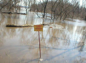 В Ростовской области ожидается подтопление из-за повышения уровня воды в реке Дон