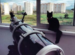 Подглядывание за девушками «без штор» в мощный телескоп устроил ростовчанин из окна седьмого этажа