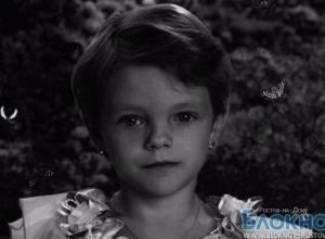 В Ростовской области возбуждено дело по факту пропажи 9-летней