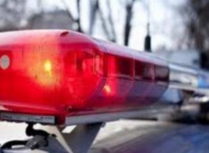 В Ростовской области в ДТП с патрульной машиной погиб пешеход