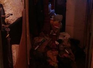 Кошмарная комната с тараканами, клопами и вонью попала на видео в Ростове