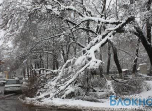В Ростовской области объявлено экстренное предупреждение из-за снега