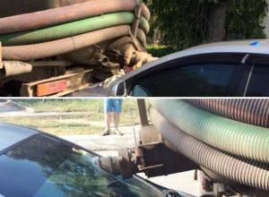 Ужасное тройное ДТП с участием ассенизаторской машины произошло в Ростовской области
