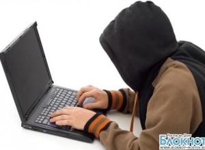 В Ростовской области Интернет-мошенники обманули предпринимателей на 50 миллионов