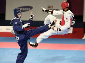 Шестьсот спортсменов приедут в Ростов на чемпионат страны по тхэквондо