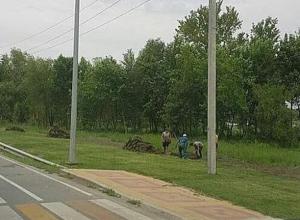 Матчи в Ростове закончились - пора прятать травку
