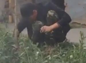 Очередной «наркокопатель» в центре Ростова вызвал беспокойство за природу у горожан на видео