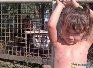 В Шахтах пришла в себя 5-летняя девочка, которой медведь откусил руку. Видео