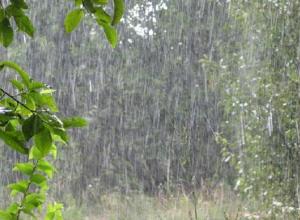 В Ростовской области до конца месяца ожидаются ливни, грозы и град