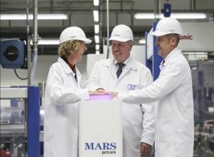 В Ростовской области открылся MARS, чтобы накормить ваших кошечек