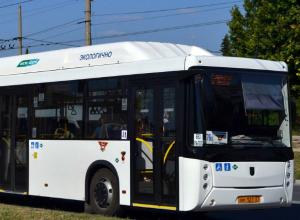 Современные автобусы с кондиционером и системой видеонаблюдения скоро появятся в Ростове