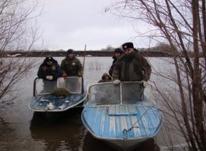 Браконьеров с огромным уловом схватили у места строительства гидроузла на Дону