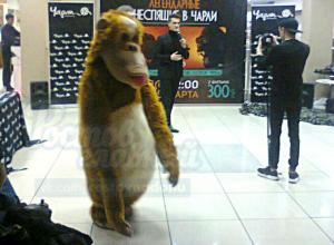 Страшно-забавный Кинг Конг вызвал насмешки у посетителей торгового центра в Ростове