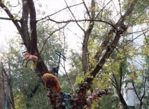 Алтарь из мертвых игрушек в Ростове угнетает и пугает жителей