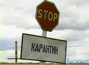 В Константиновском районе Ростовской области установлен карантин по бешенству